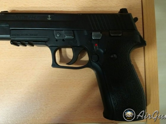 Sign suear p226 blowback