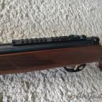 Hatsan Mod95